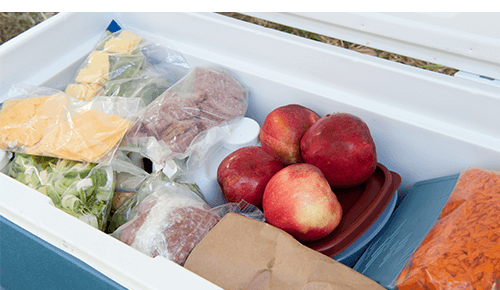Picnic Food in Cooler with Ice