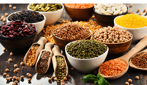 Choose Less-Expensive Protein Options Variety of Beans Foods