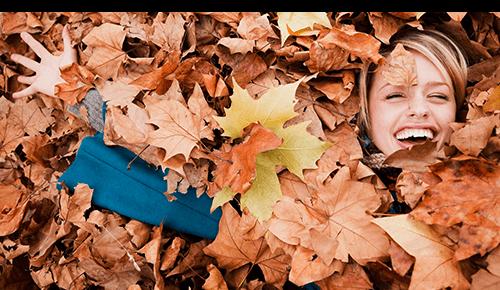 Play in Leaves