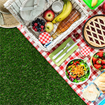 Closeup of picnic foods and supplies on a blanket sitting on grass