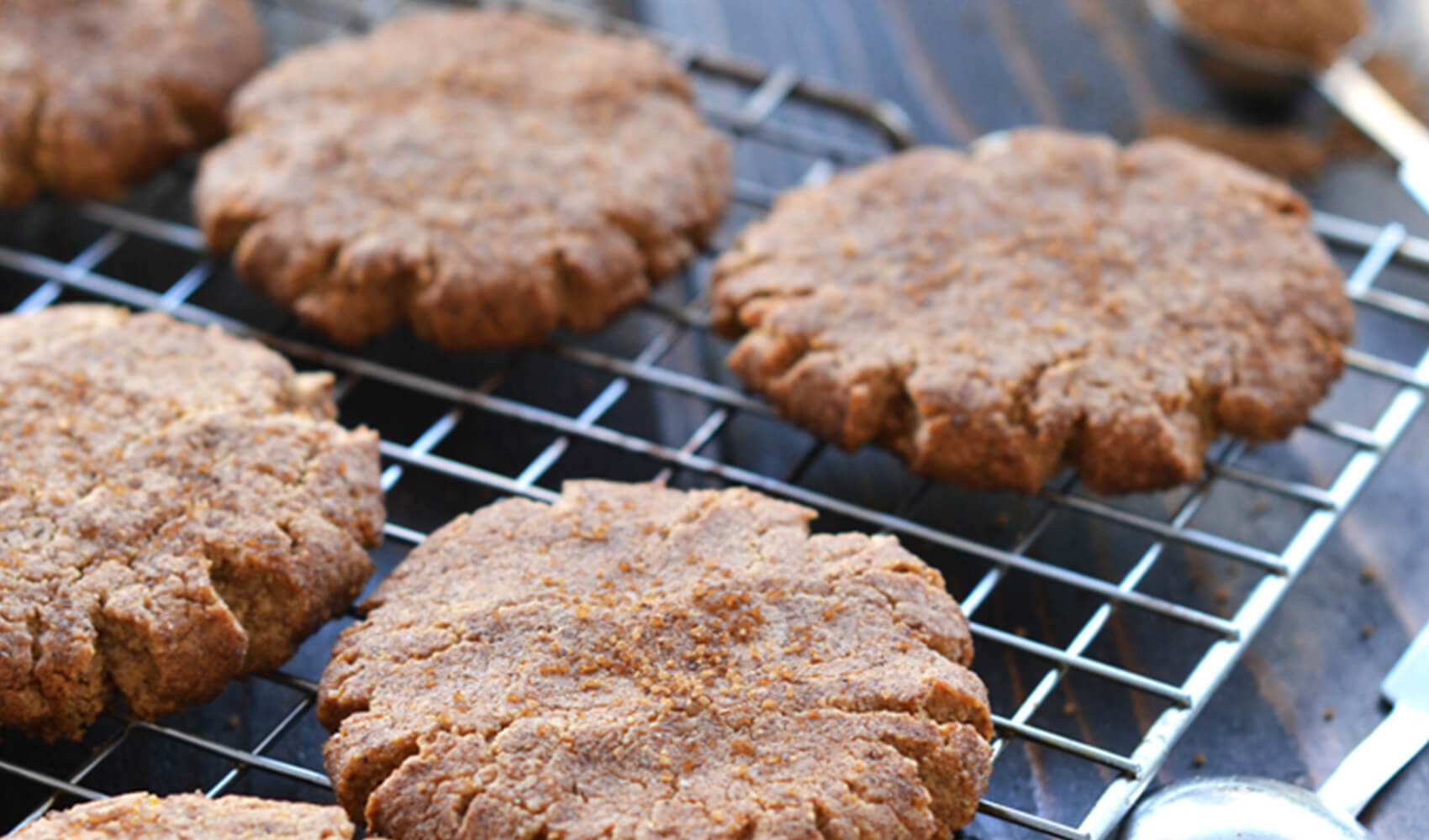 Chai Spiced Protein Snickerdoodles