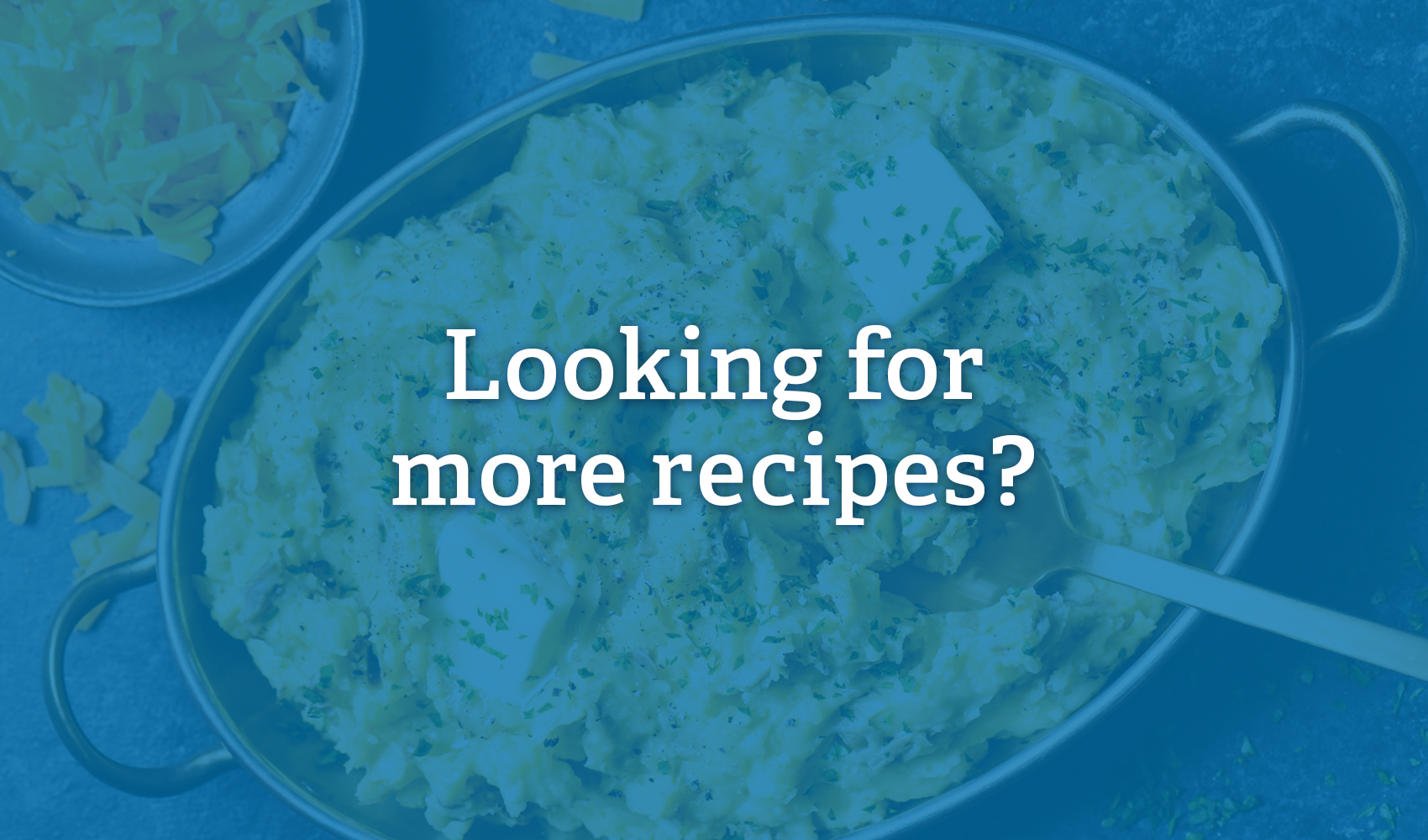 Check out our Recipe Roundup Series