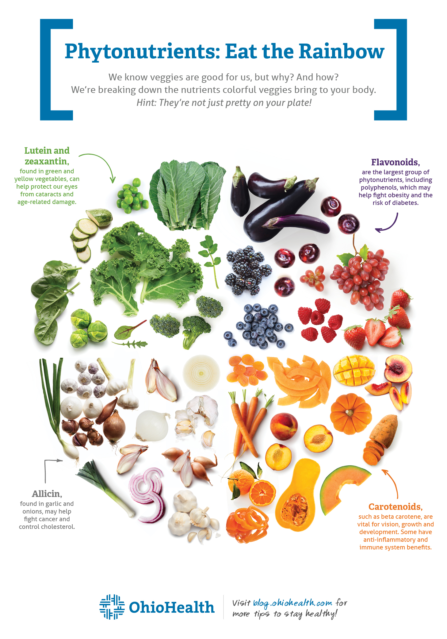 Infographic depicting a variety of fruits and vegetables and the phytonutrients they contain