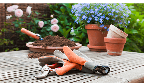 Gardening gloves and tools sitting next to plants and pots