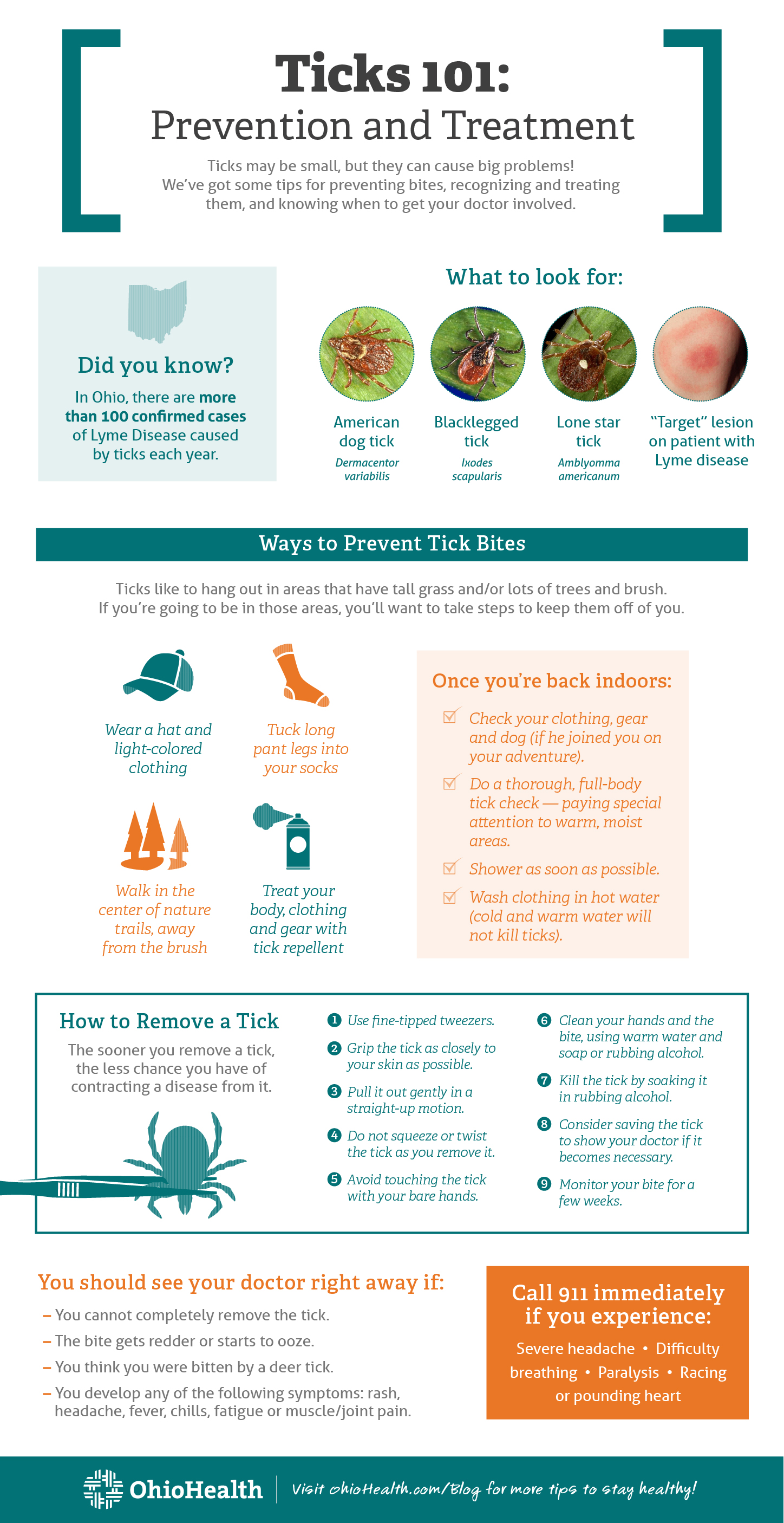 Infographic describing prevention and treatment of tick bites