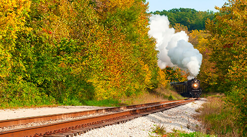 Train in Fall Foliage