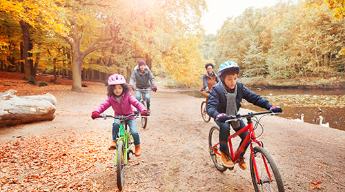 Family Biking through Fall Forest