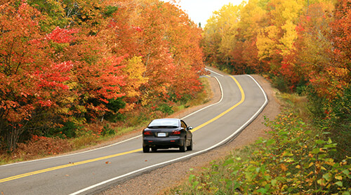 Car Driving through Fall Foliage