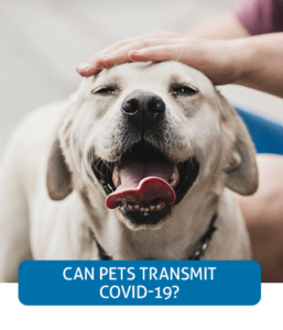 Go to Fast Facts page about pets and COVID-19